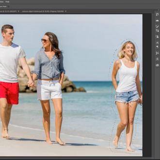 How to Remove Anything from a Photo